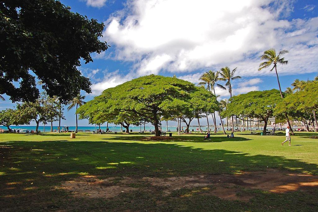 ヨガしたくなるハワイの公園4選!ダイヤモンドヘッドに動物園も!