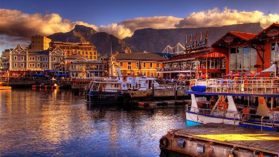 ケープタウンで絶景満喫!世界屈指の美しい港町でおすすめ観光スポット7選