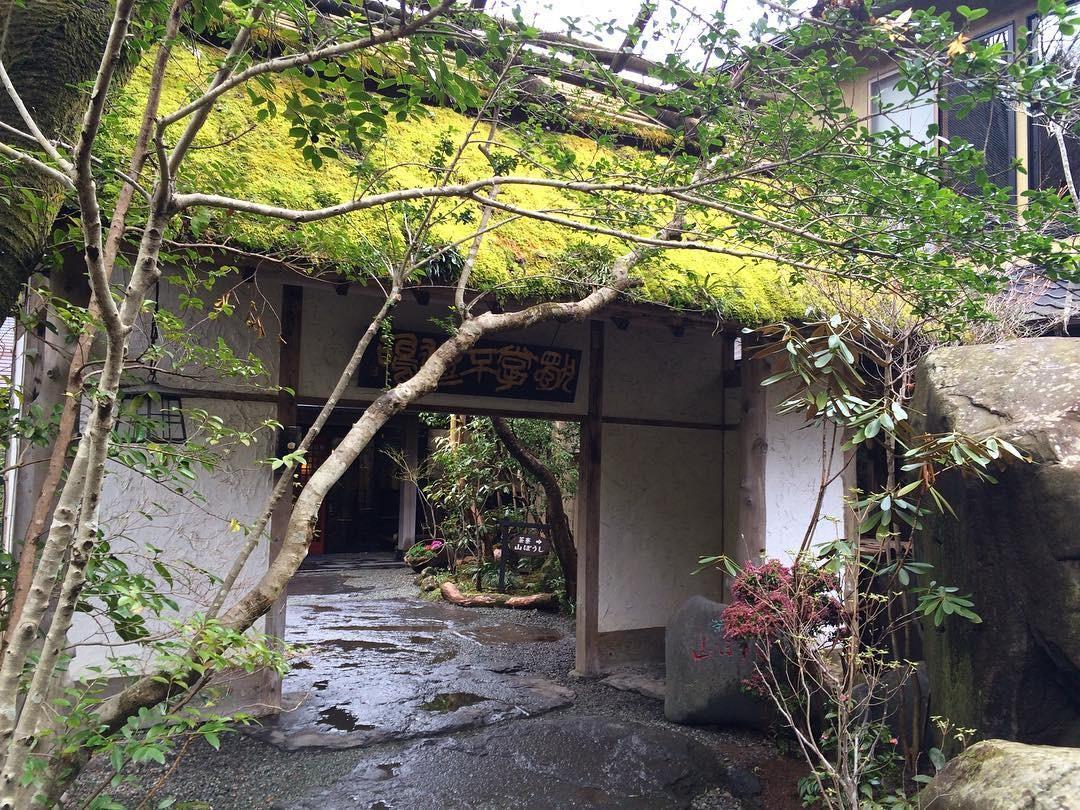 熊本・黒川温泉で泊まりたい人気の おすすめ旅館11選 !