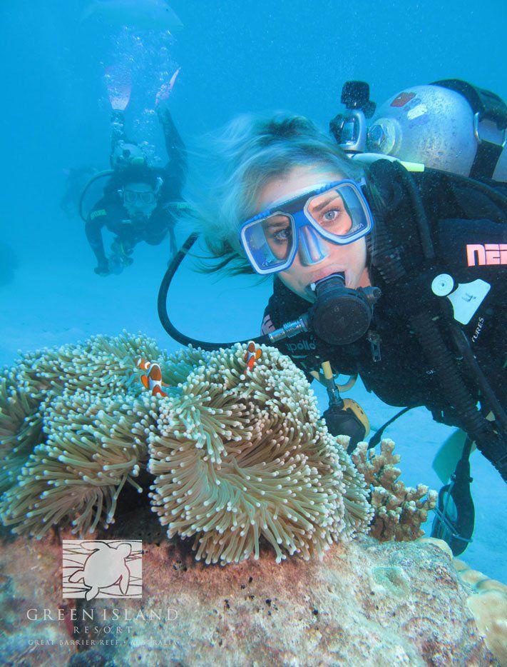 ケアンズから行く珊瑚礁の小さな島 グリーン島徹底ガイド!