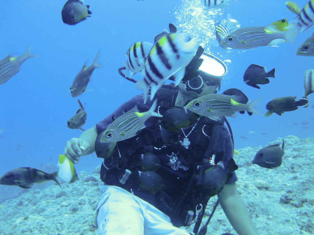 グアムの海で体験できる人気のマリンアクティビティおすすめ9選