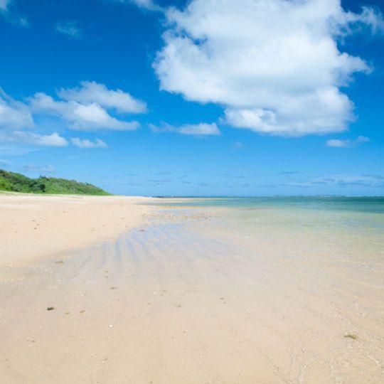 【西表島旅行体験記】西表島での観光オススメスポットまとめ!美しい自然溢れる!