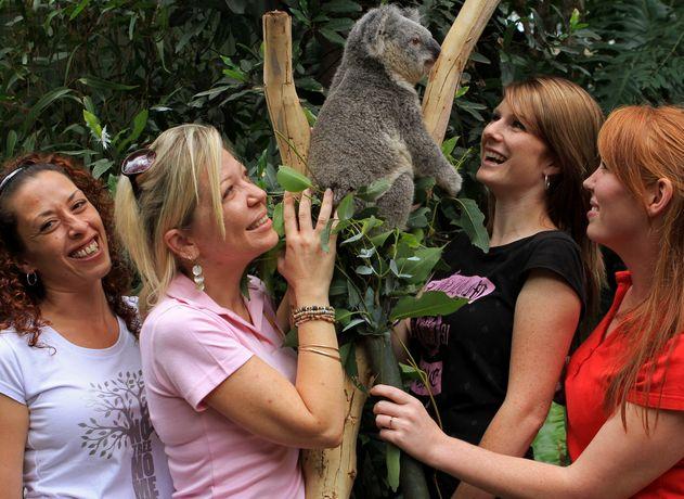 シドニーで人気の動物園&おすすめ水族館6選!コアラパークにナイトサファリも!