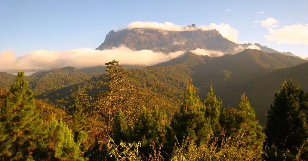 ボルネオ観光スポット7選!コタキナバルから行く自然満喫の旅