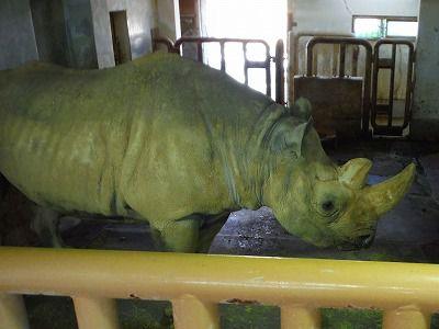 見なきゃ後悔する4種の動物!宮城県・八木山動物公園
