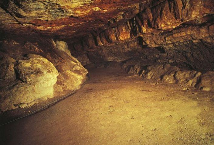 アルタミラ洞窟の画像 p1_40