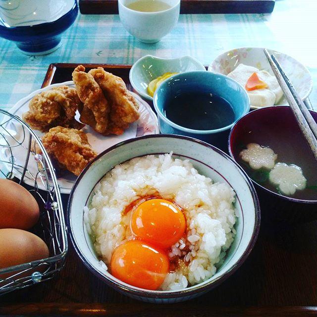 卵かけごはんが美味しい専門店全国人気5選!絶品TKGを味わおう!