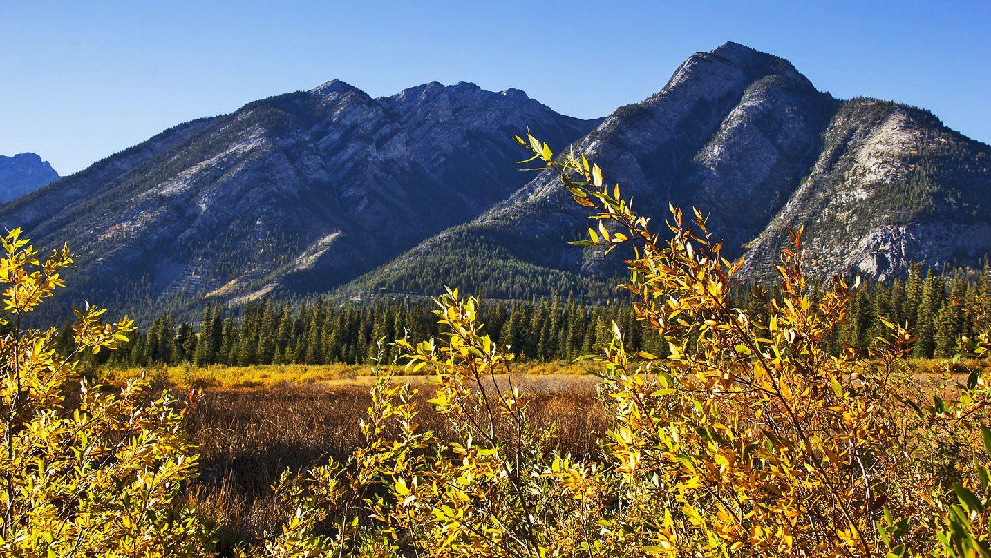 カナダバンフ国立公園でおすすめの人気トレッキングコース!気軽に絶景が望める初心者コース