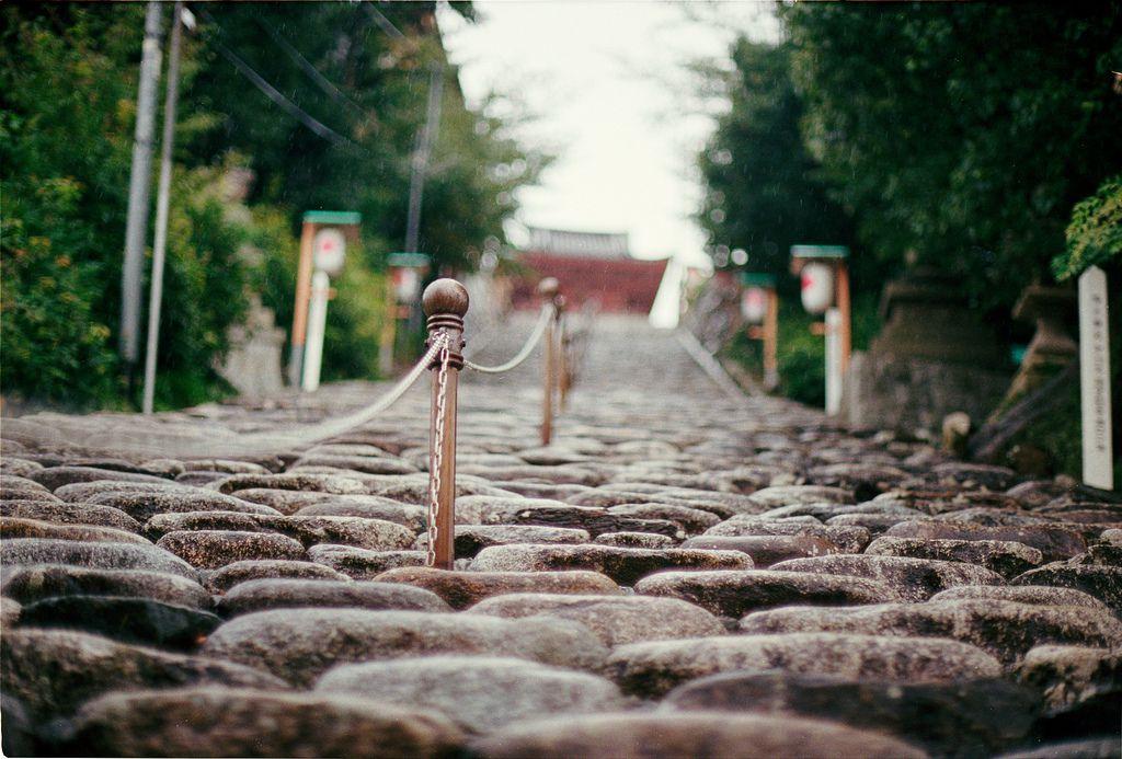 日本三大下り宮とは?階段の下に社殿がある珍しい神社【群馬・宮崎・熊本】