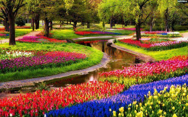 オランダ・アムステルダムの人気観光スポット4選!オランダらしさ満点の景色が目の前に