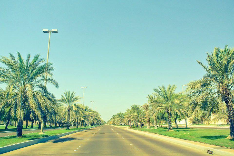 【アラビアンナイト】アブダビで必ず行くべき5つのスポット