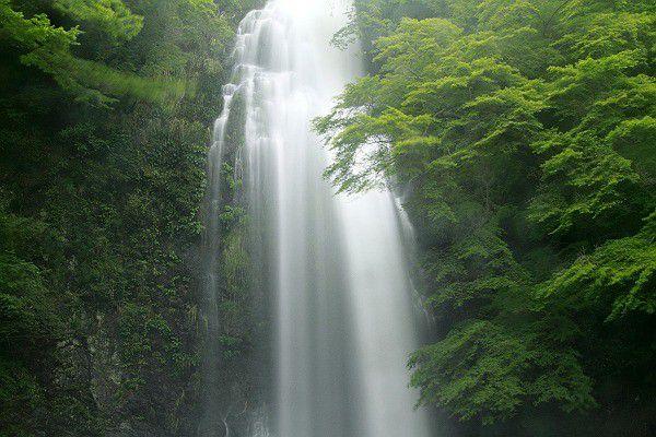 大阪・箕面滝の四季を楽しもう!美しき「日本の滝百選」の絶景特集
