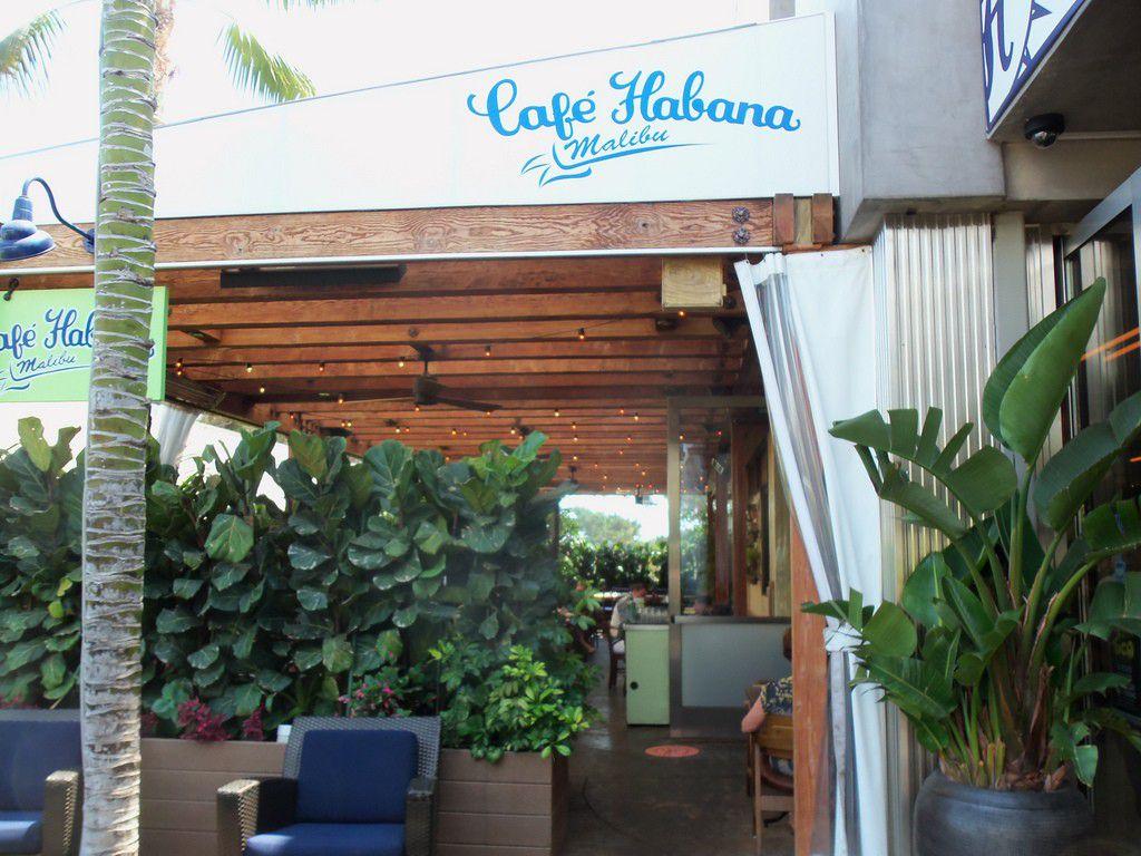 ロサンゼルス・マリブのカフェでカリフォルニアの魅力を満喫!