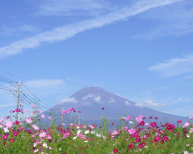 富士山が一望!静岡の温泉「すその美人の湯ヘルシーパーク裾野」が絶景でおすすめ!