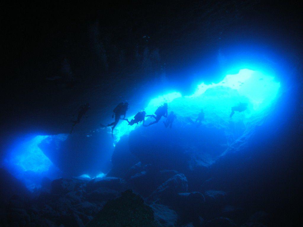 サイパンダイビングで出会うカラフルな魚たち!ダイバー憧れスポットの魚辞典