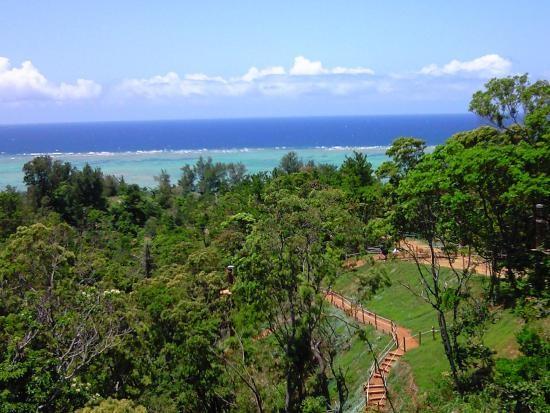 沖縄で空中散歩!感覚アクティビティーフォレストアドベンチャーとは?