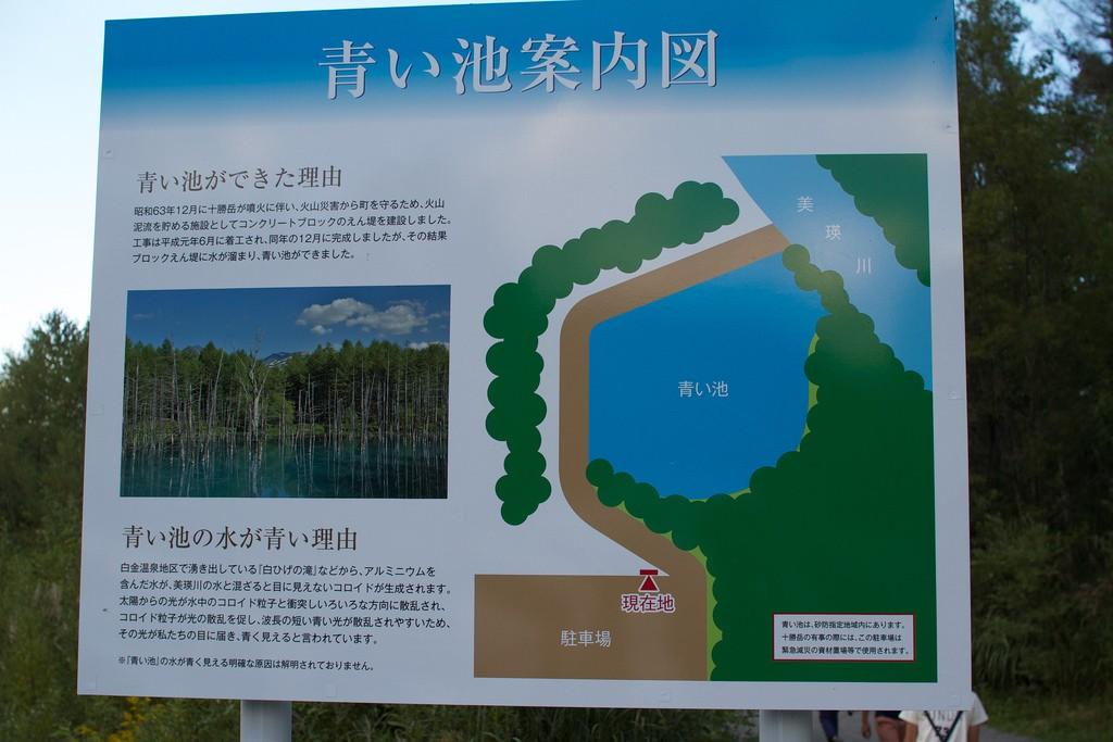 北海道・美瑛旅行の人気スポット「青い池」特集!コバルトブルーの神秘スポットへ