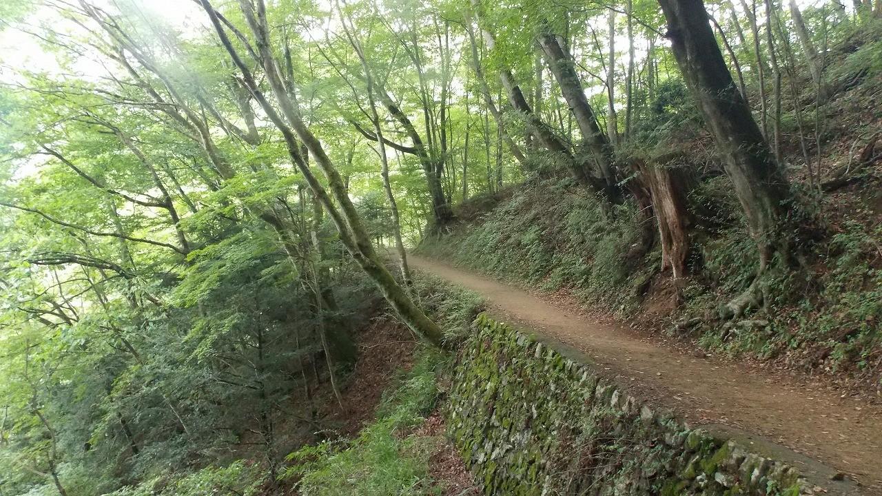 春の青森で楽しむおすすめハイキング&人気登山!大自然溢れる山々で冬の運動不足を解消しよう