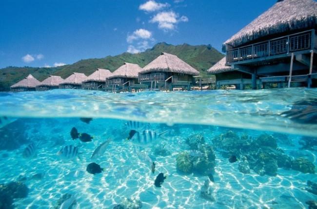 憧れのリゾート地!タヒチ観光でやりたいことベスト5