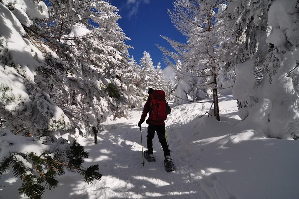 北欧オーロラ鑑賞旅行で楽しみたいスノーアクティビティ5選!雪国ならではのユニーク体験