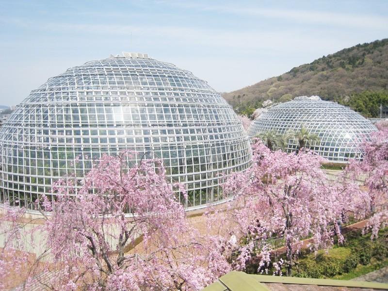 名古屋おすすめ観光スポット30選!定番から人気スポットまでズラリ集結、これでアナタも名古屋通