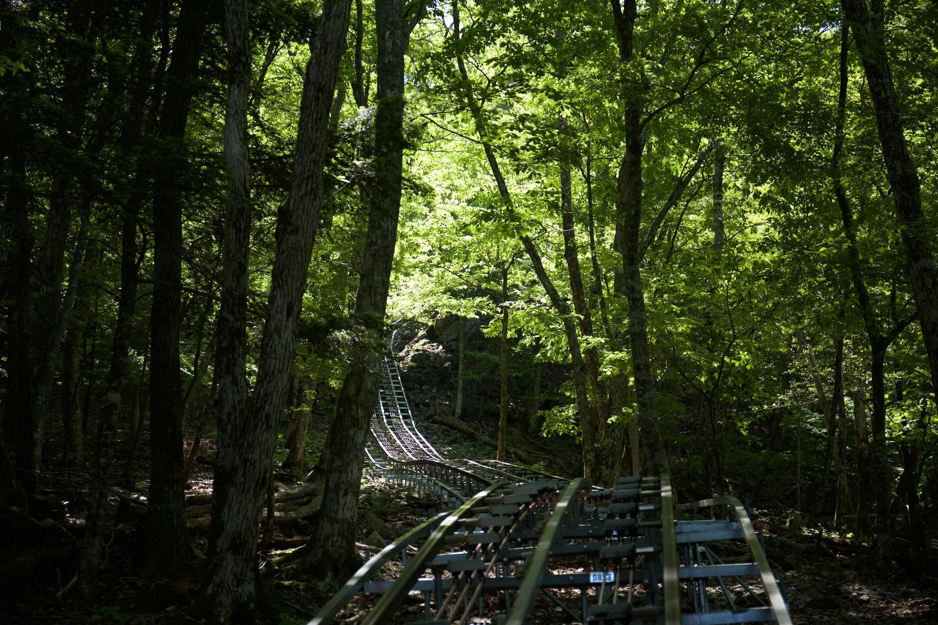 【四国】徳島県三好市の世界最長&傾斜最大の「奥祖谷観光周遊モノレール」