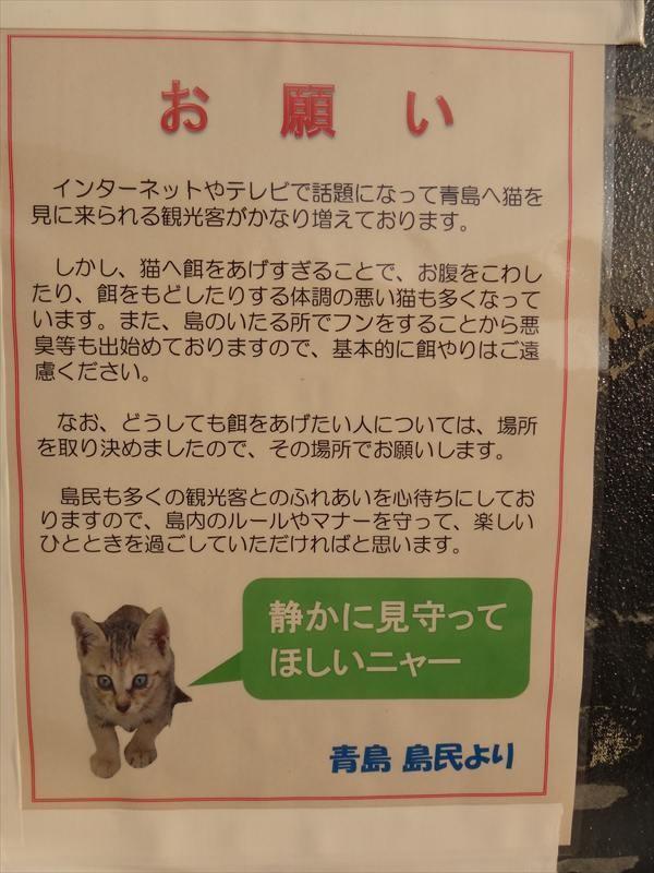 島民19人なのに猫は約200匹!! 瀬戸内の猫だらけ島「青島」