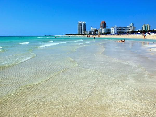 マイアミで絶対外さないおすすめ観光スポット15選 【定番から穴場まで】
