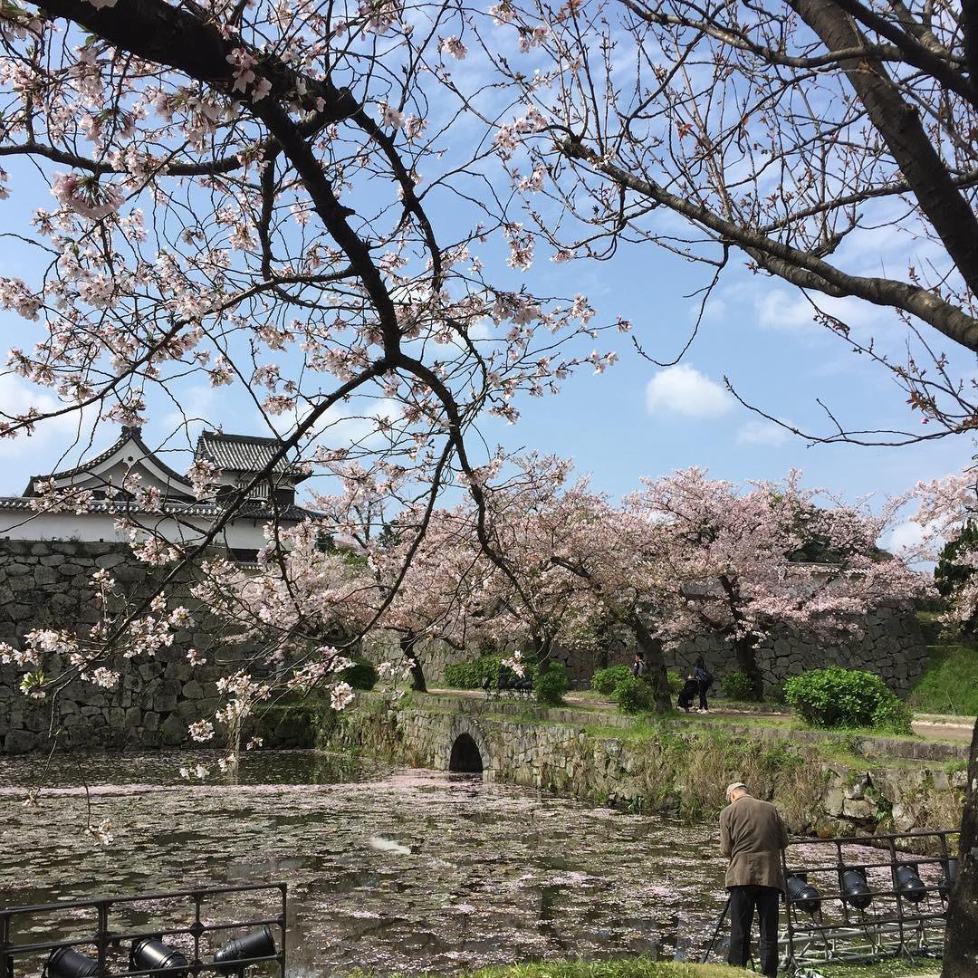 福岡観光はココに行けば間違いない!必ず行くべき観光スポット15選