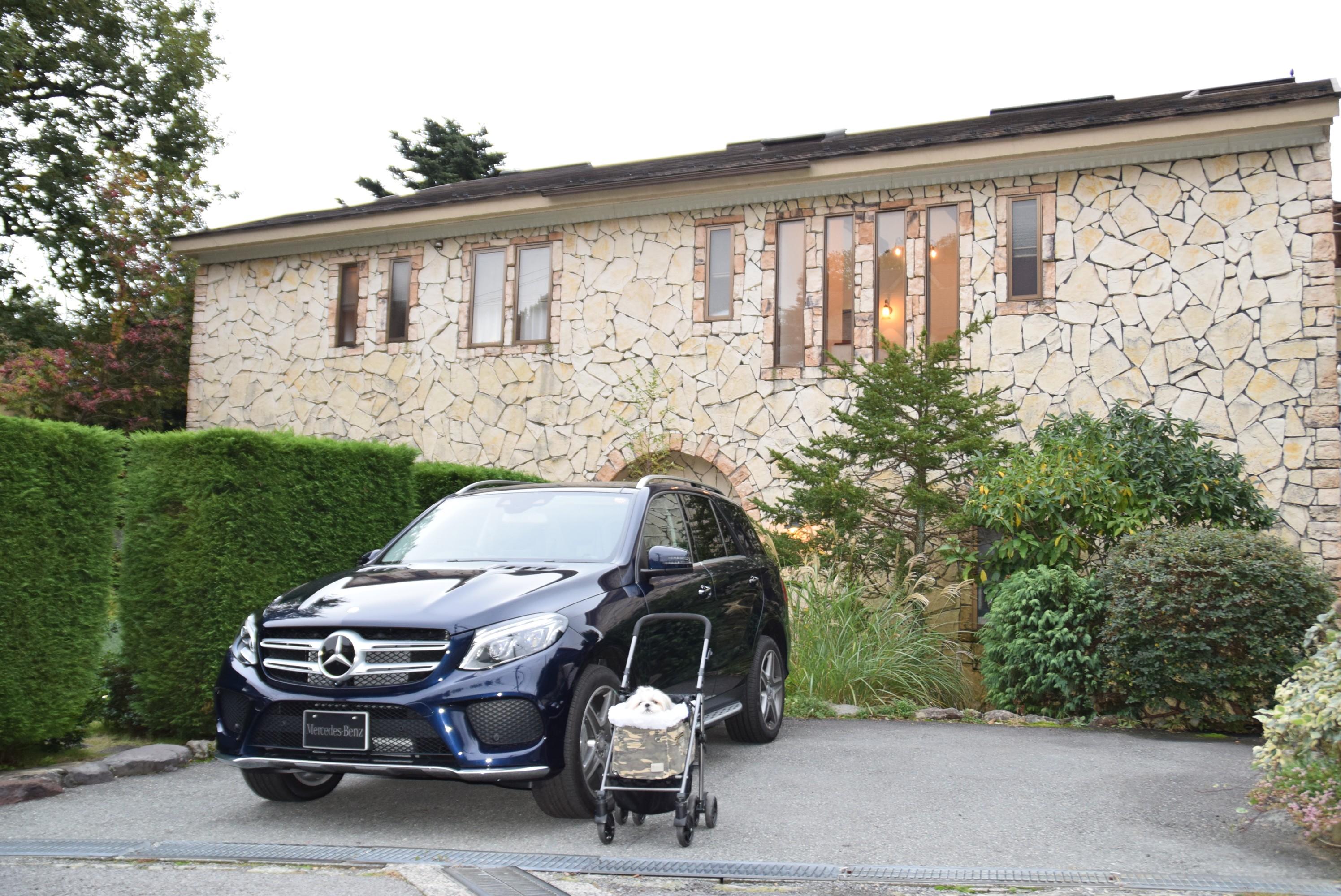 伊豆高原にあるペットと一緒に泊まれる高評価の旅館【別邸石の家】