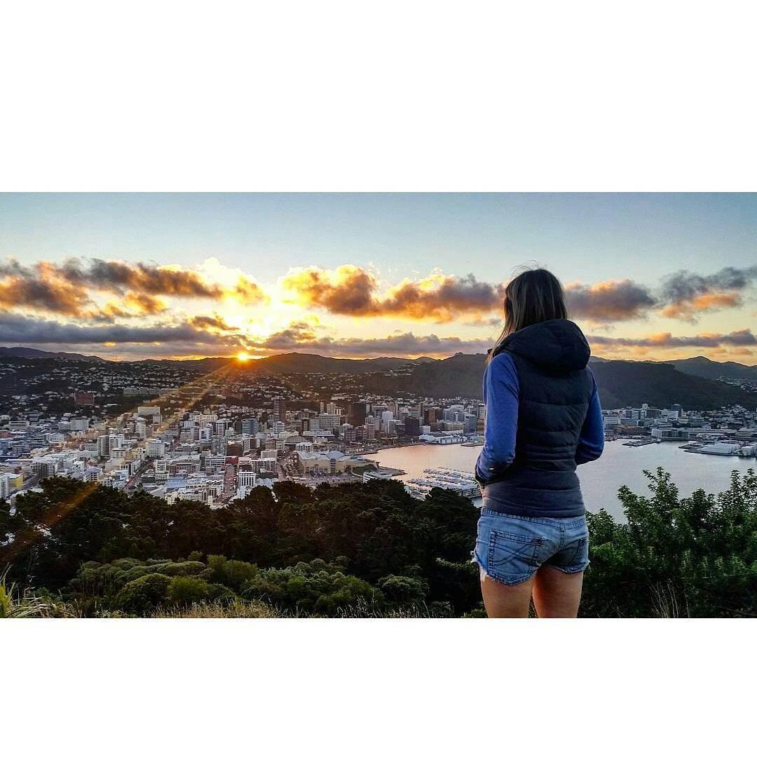 ニュージーランド・ウェリントン観光おすすめスポット4選!静かな海辺の街を思う存分楽しもう