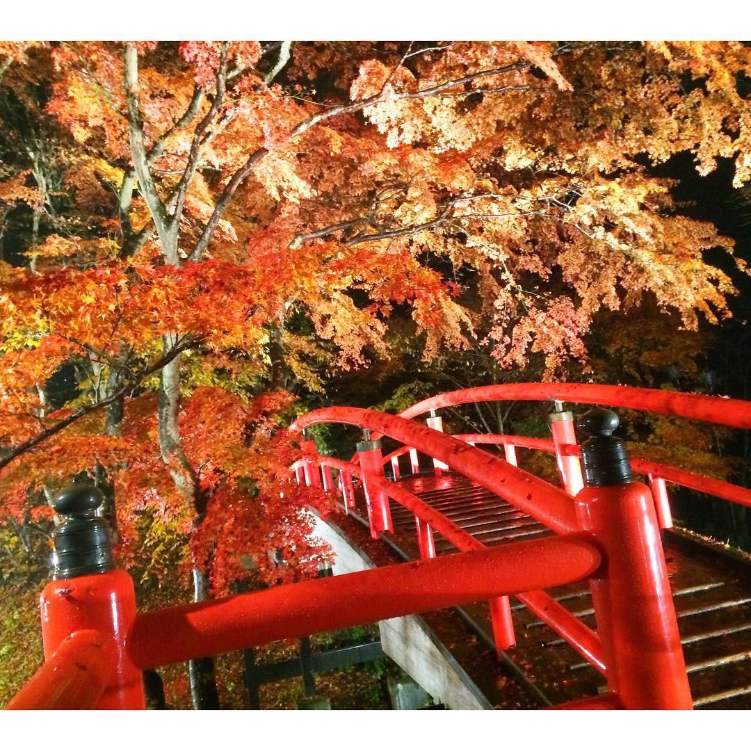 伊香保温泉のおすすめ観光7選!欠かさず行きたい人気スポットはここ!