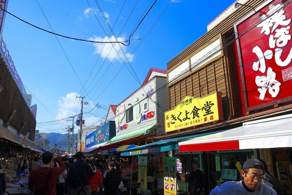 北海道の味を堪能!函館朝市でイカ釣り体験を楽しもう