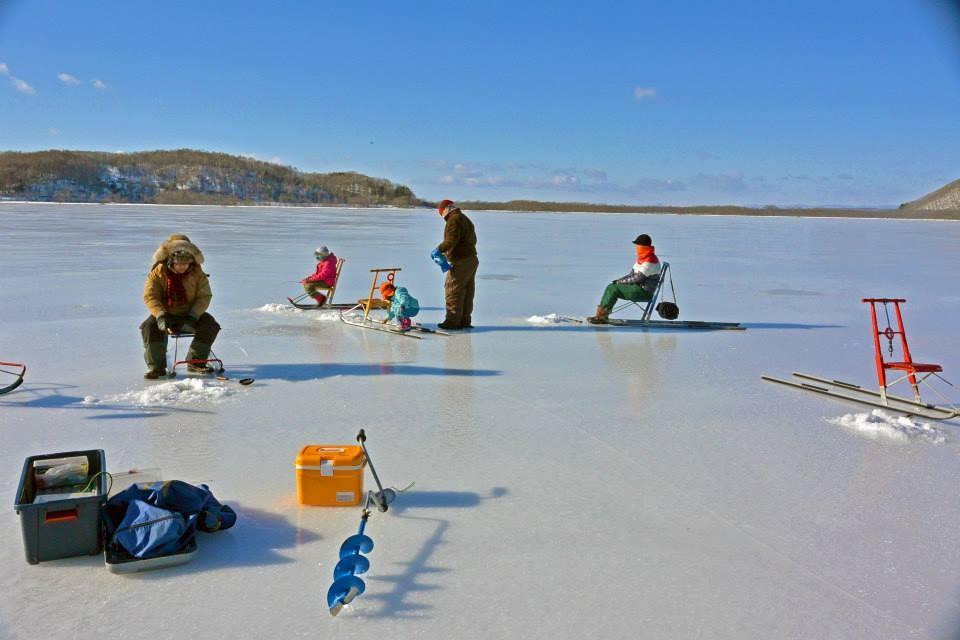 北海道・釧路湿原で観光を満喫!おすすめポイントをご紹介