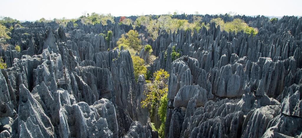 マダガスカルで絶対行くべき観光スポット10選