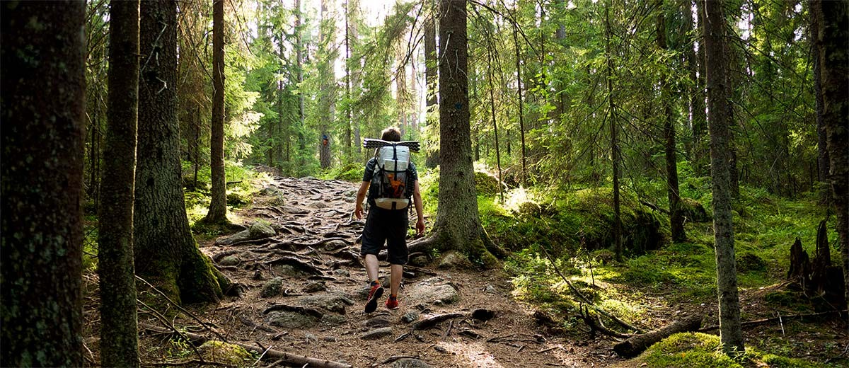 フィンランド・ヘルシンキ近郊の観光スポット4選を全部巡りたい♡