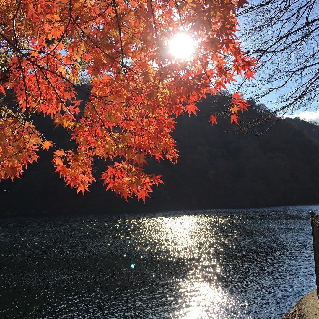 布引の滝観光に!新神戸駅からハーブ園までミニ・トレッキングコースご紹介