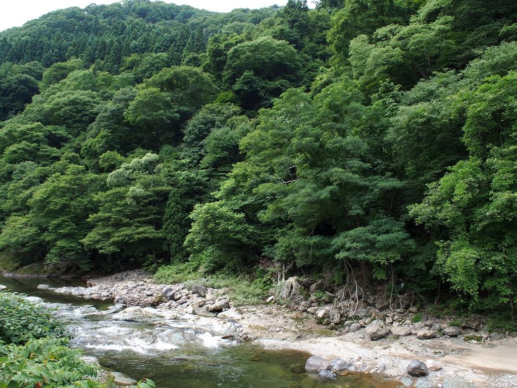 北海道・屈斜路湖で釣りを楽しもう!魚と真剣勝負をしませんか