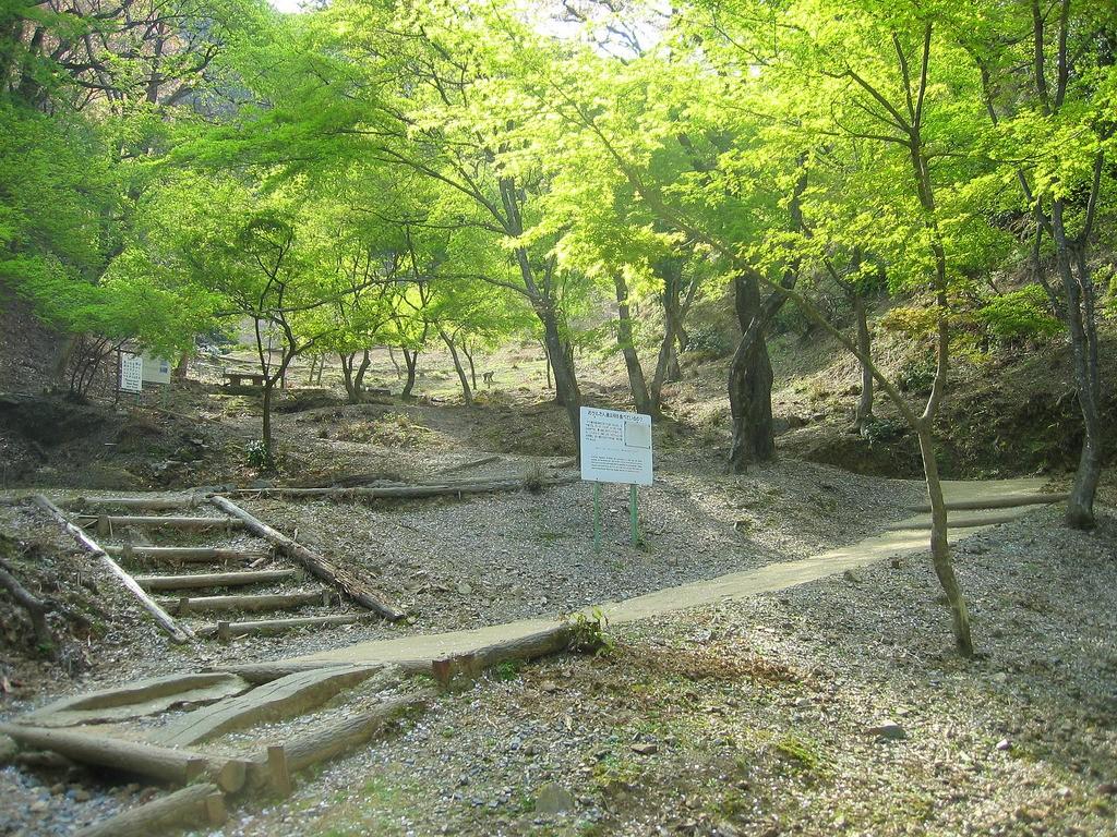 京都・嵐山観光で訪れたいおすすめ観光スポットをまとめて厳選!