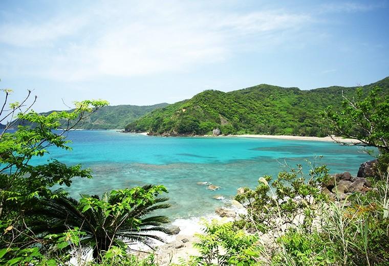鹿児島・奄美大島から離島へ!加計呂麻(かけろま)旅のススメ
