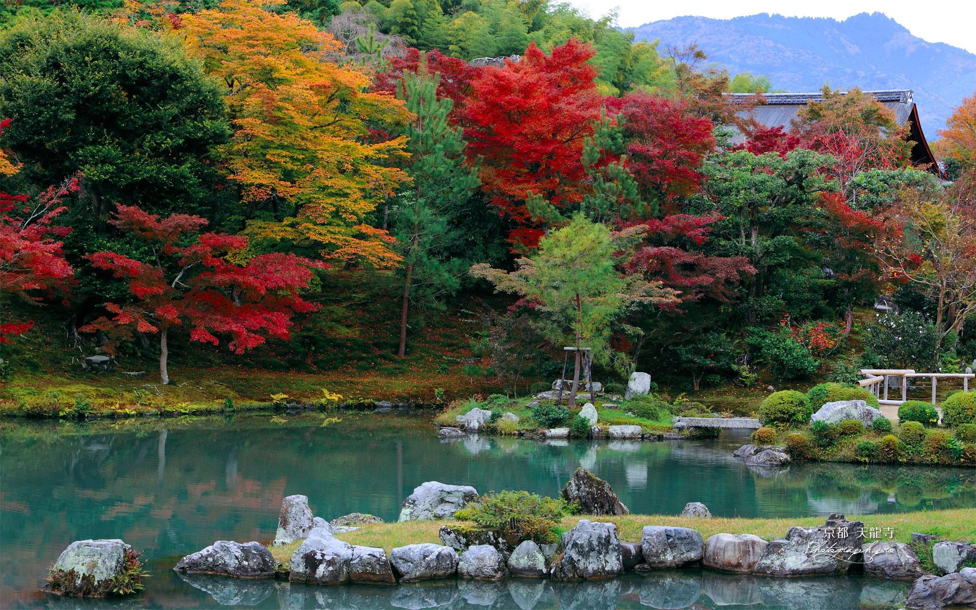 歴史の寺!京都・天龍寺へのアクセス方法と拝観料まとめ