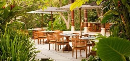 バリ島ウブドでヨガ三昧!ウェルネスホテルやオーガニックカフェも