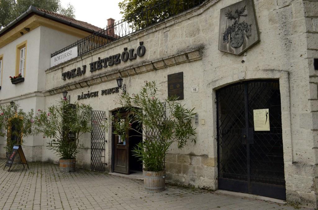 ハンガリー世界遺産探訪!自然をたっぷり満喫したいアナタにぴったりプラン