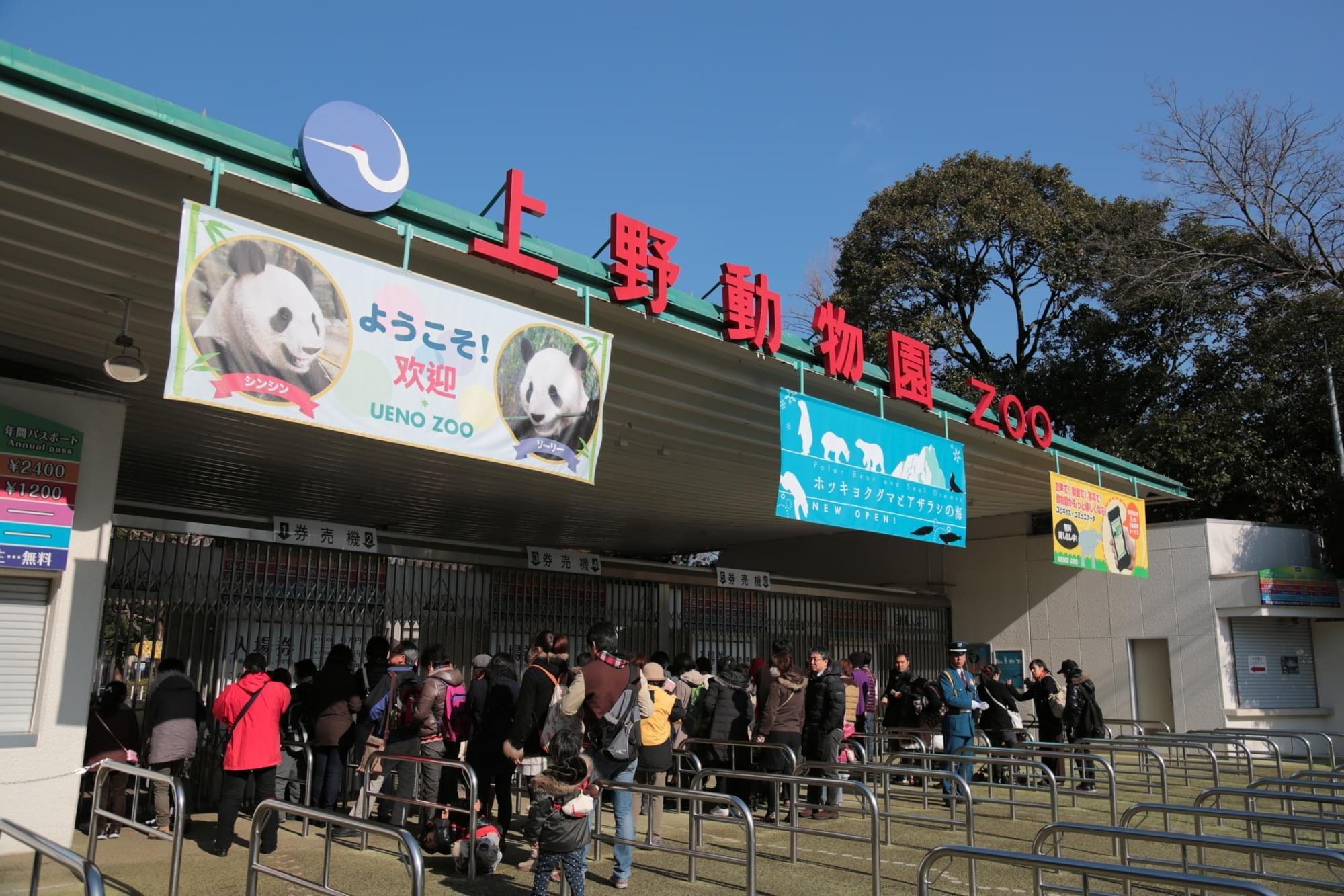 パンダで有名な動物園「上野動物園」東京駅からのアクセス徹底ガイド!