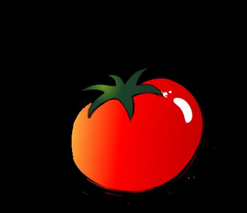 超本格的!新大久保「韓国家庭料理トマト」は韓国人留学生が通い詰める人気店
