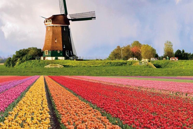 オランダ基本情報 【気候・服装編】