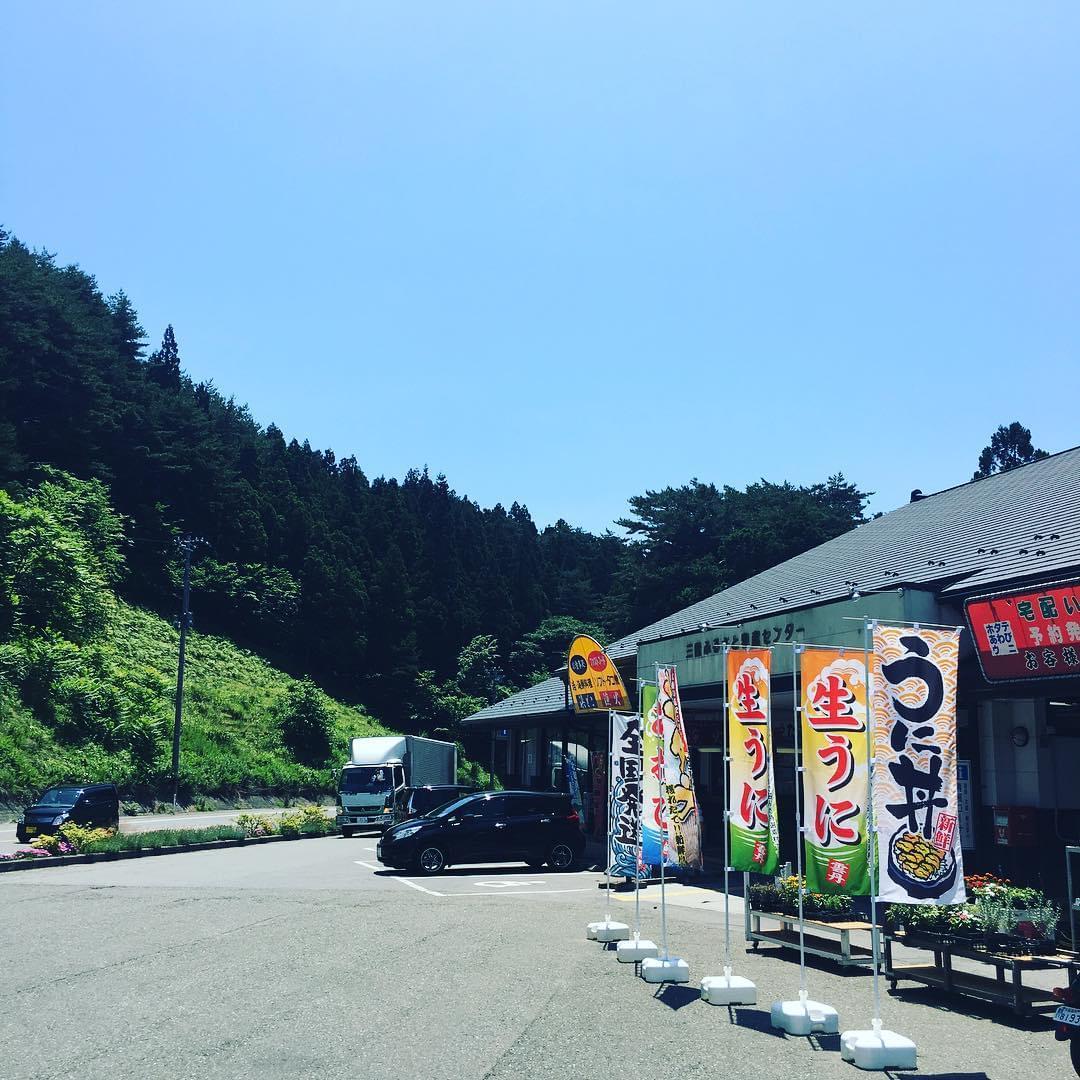岩手の道の駅おすすめソフトクリーム特集!こんな味食べたことない!