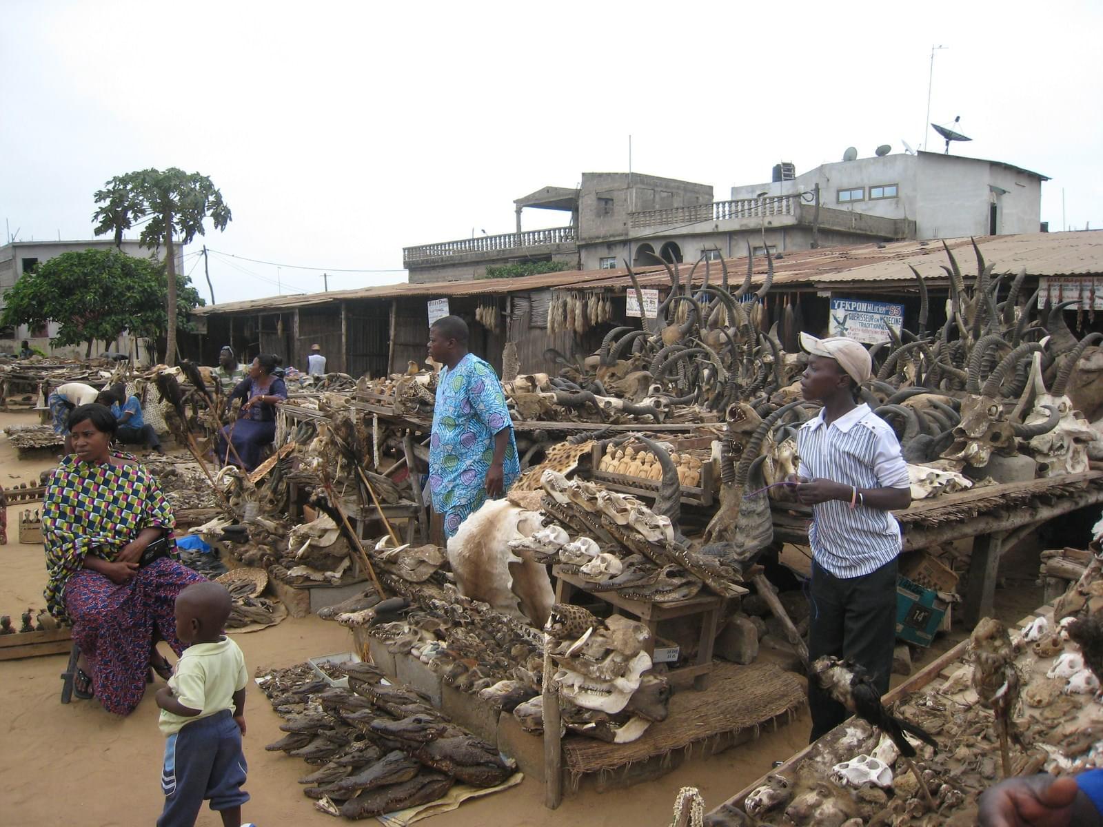 アフリカ・トーゴ共和国ってどんなところ?おすすめ観光名所4選