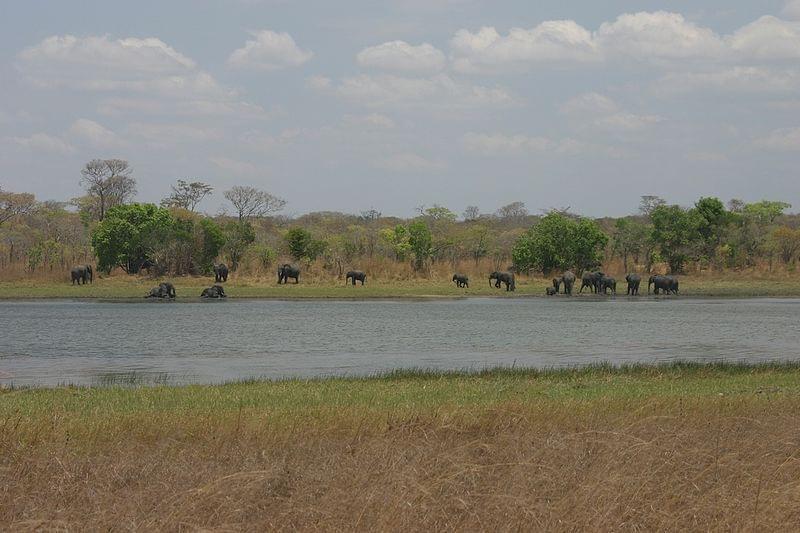 南東アフリカの小国マラウイの魅力的な観光スポット