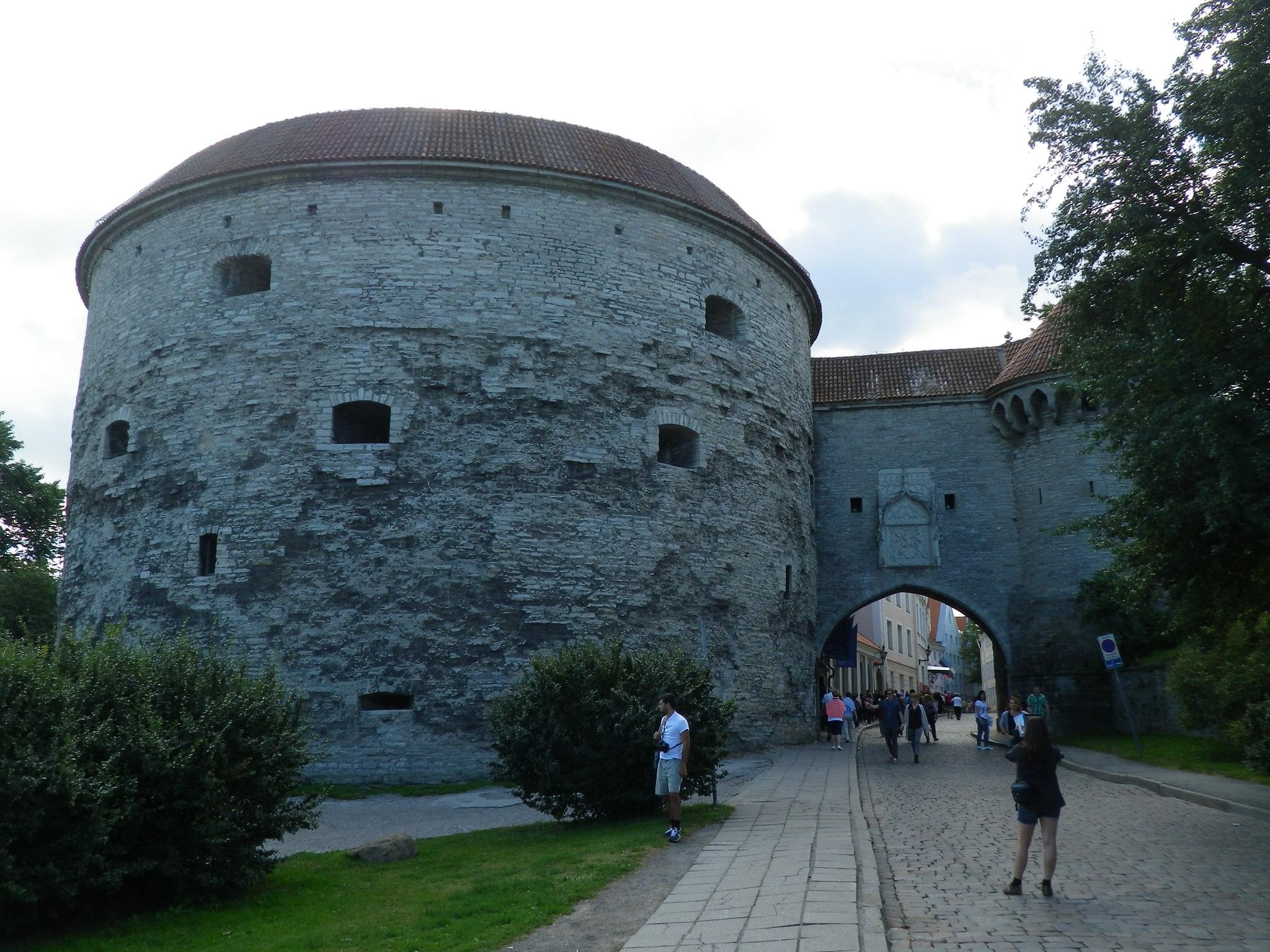 【エストニア】世界遺産の街・タリンに行ってみよう!